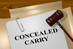 3D illustration of 'CONCEALED CARRY' title on legal document